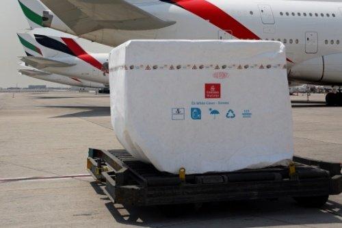Emirates SkyCargo  предлагает новый материал для теплозащиты грузов